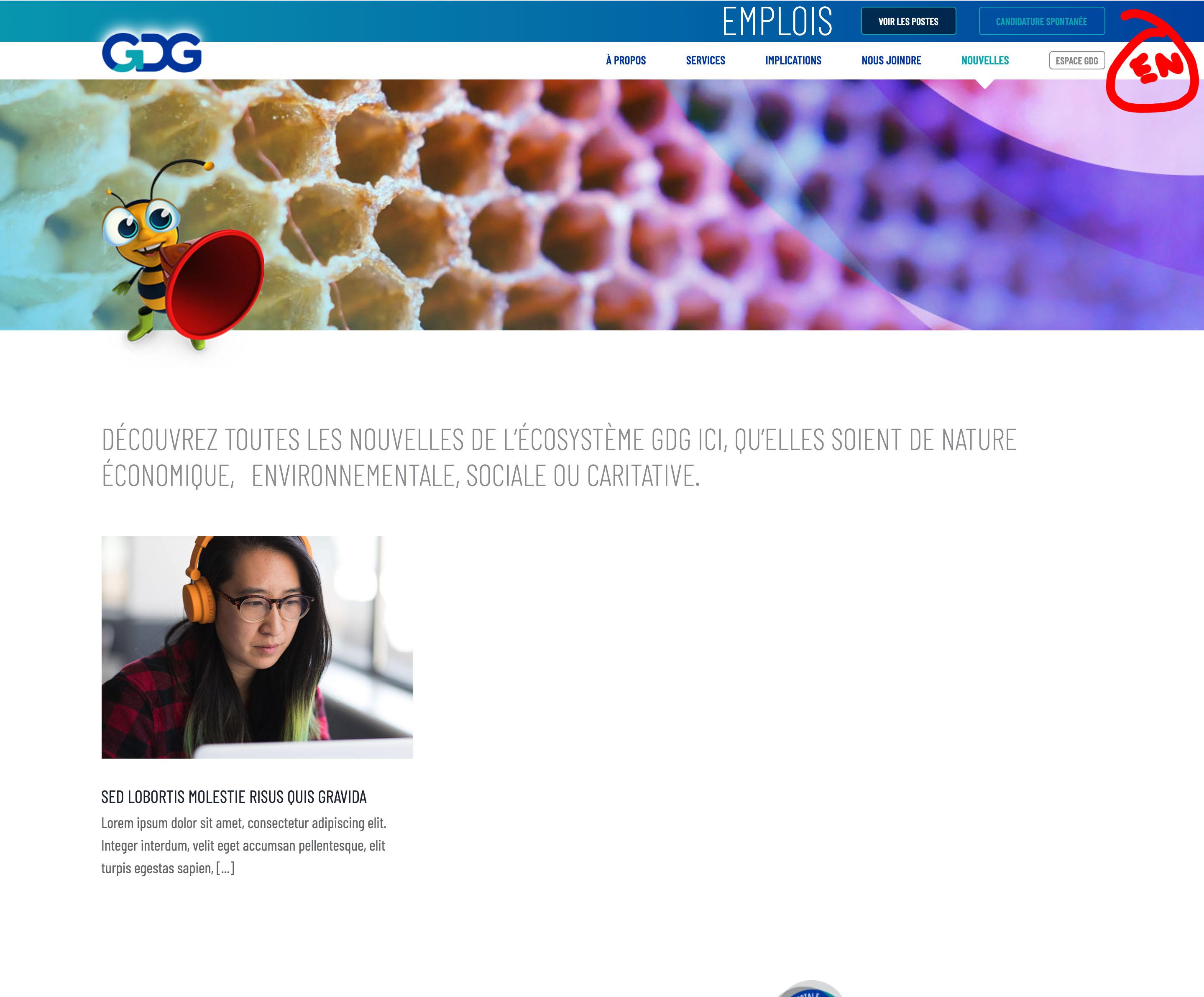 site_en_ligne-dev.jpg