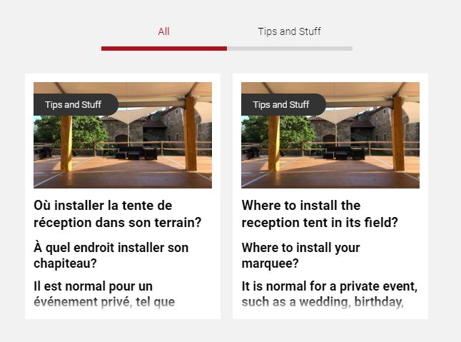 example-fr-en-articles.PNG