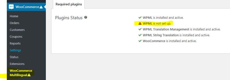 wocommerce_multilangauge_error.JPG
