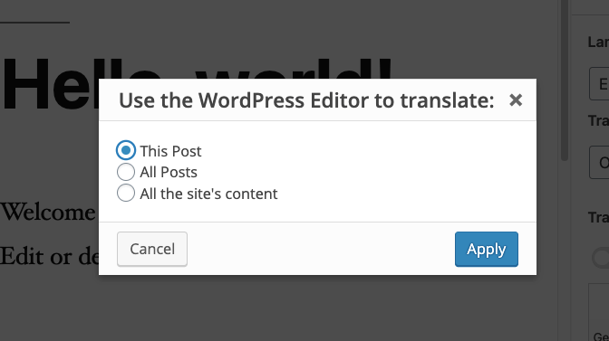 Specifying we will only use the WordPress editor to translate This post