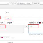 translate-dynamic-url.png