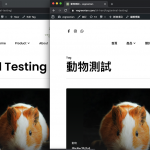 In BLOG DETAILS page of Chinese, the title